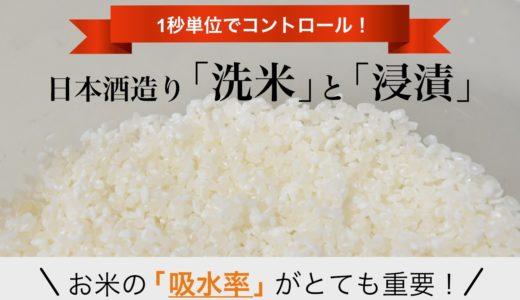 日本酒造りの洗米(せんまい)と浸漬(しんせき)とは|洗米と浸漬は「吸水率」がとても重要